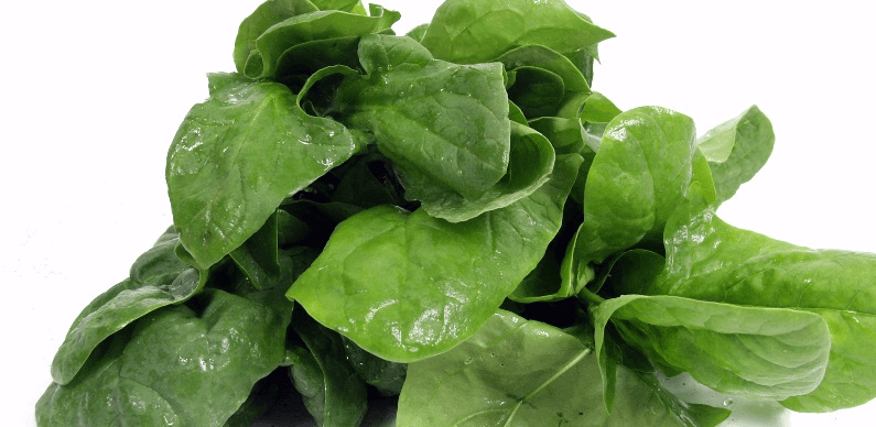 Spinach for Folic Acid